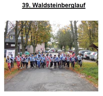 Waldstein-Berglauf